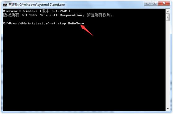 """输入""""net stop WuAuServ"""""""