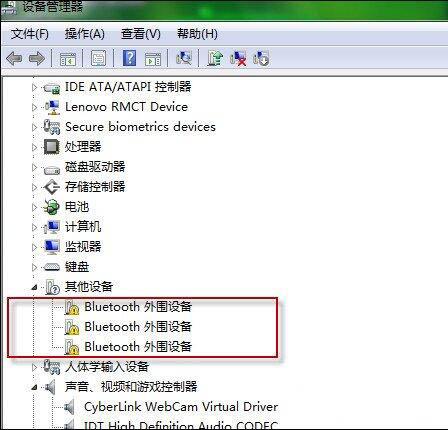 Bluetooth外围设备驱动错误