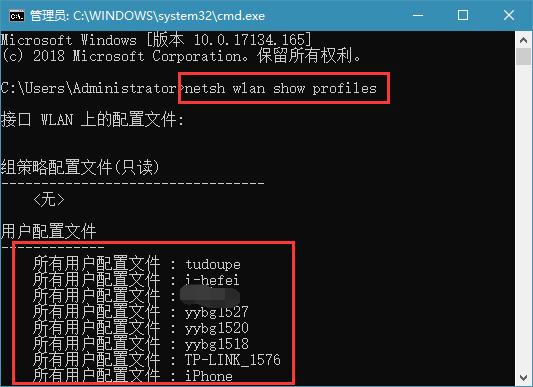 输入:netsh wlan show profiles 命令