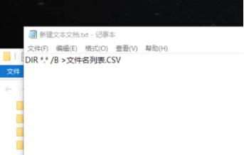输入:DIR*.*/B>文件名列表.CSV  命令