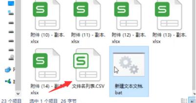 文件名列表.csv