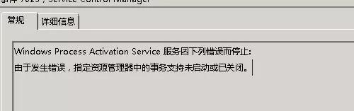 Windows Process Activation Service